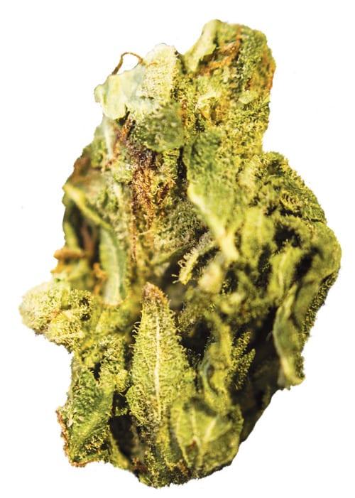 weed03