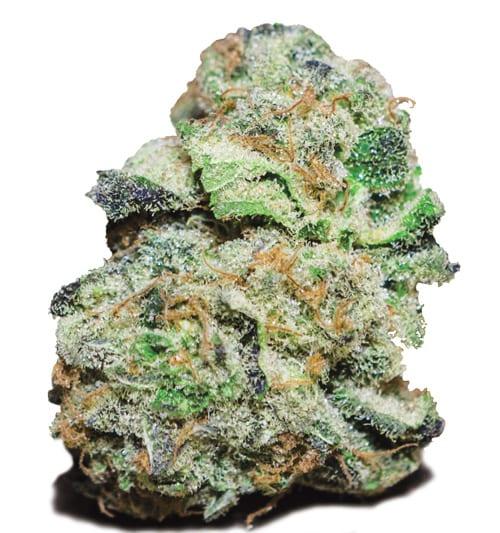 weed04